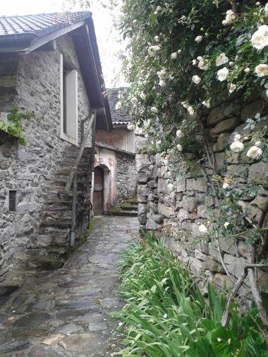 Ticino10
