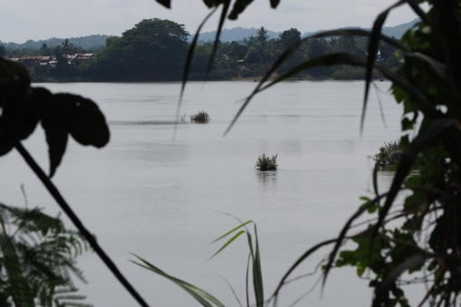 View to the mighty Mekong