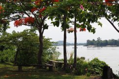 View to the Mekong