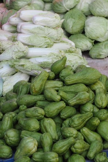 Chayote, china salad, cabbage