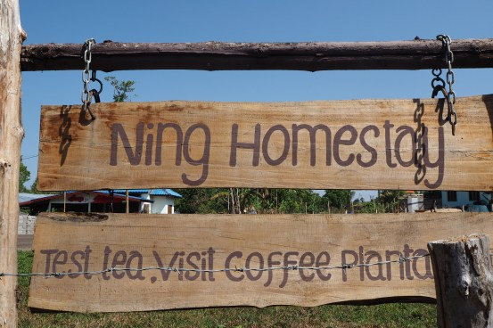 Visit tea and coffee plantations