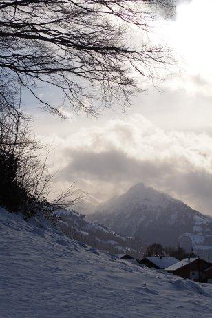 Light play in winter